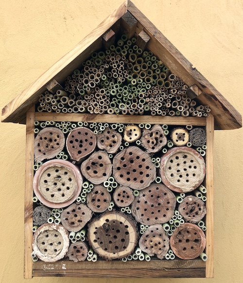 Completed bee hotel with all accommodation made and ready for occupancy by native bees.